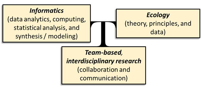 Graphic showing the 3 areas linked in the T3 program: Informatics, Ecology, and Team-based interdisciplinary research