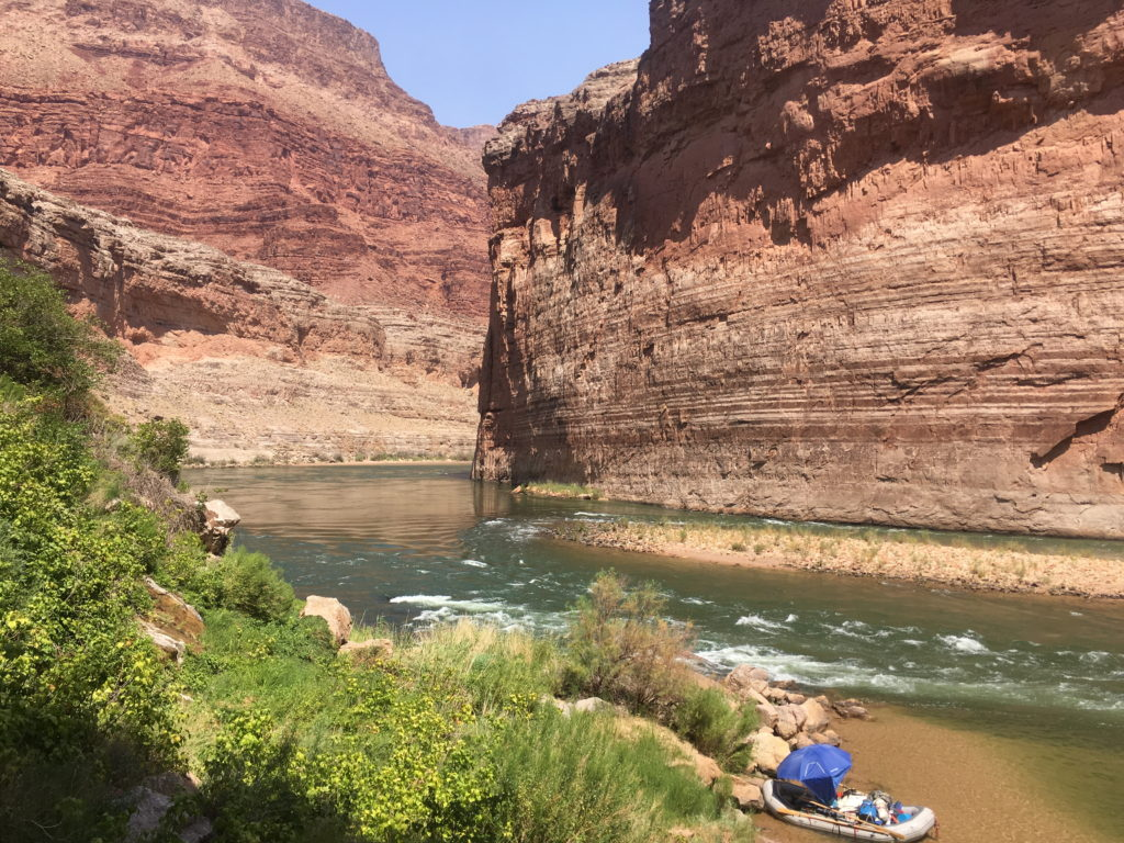 Picture of rafts at Vaseys Paradise in Grand Canyon