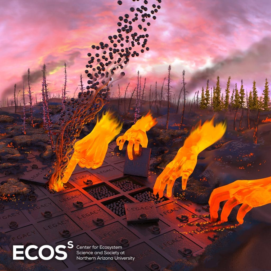 Illustration of fires releasing carbon