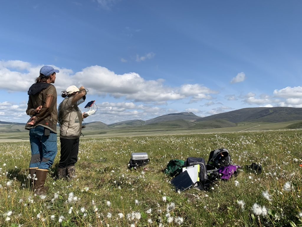 Two grad students use an ipad to monitor a drone as it completes its flight in a cottongrass tundra. Photo from NASA Earth Expeditions page.