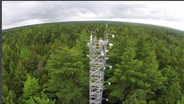 Photo of flux tower over tree canopy