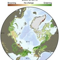 Polar view map showing change in Tundra greenness 2000 to 2006