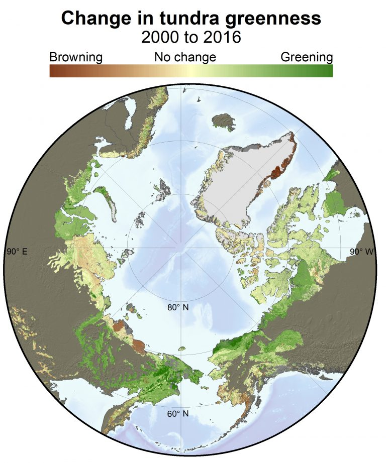 Summer warming is turning the Arctic greener