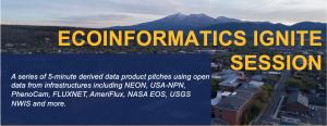 Ecoinformatics Ignite Session logo